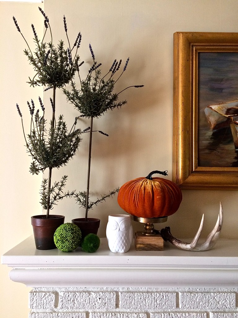 Welcoming Fall into your Home for under $100.