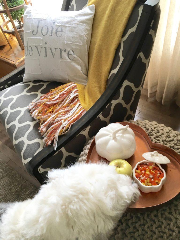 textures_of_fall_pumpkins_copper_home_decor_throw_blankets-homegoods
