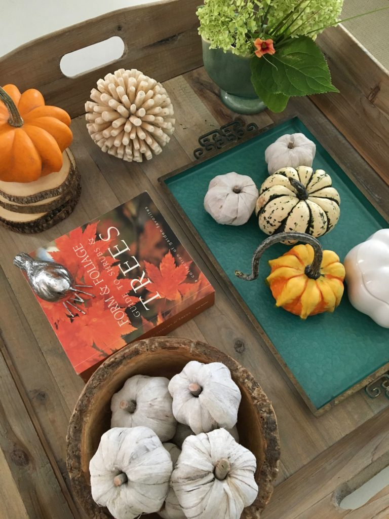styling_a_coffee_table_fall_pumpkins_tray_rustic_cottage