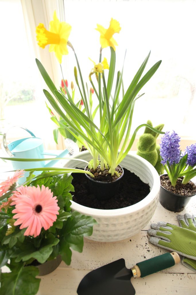 Building_Spring_Easter_container_garden_flowers_floral_living_homegoods_planter_how_to_garden