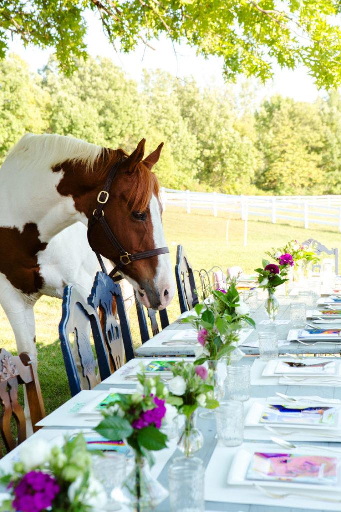 kaaren_anderson_Solvieg_studio_meme_hill_dog_portraits_horse_outdoor_farm_dining_plates