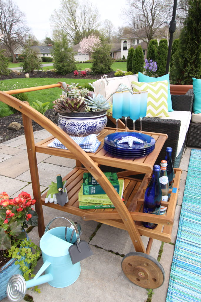 Amie_freling_meme_hill_studio_raymour_flanigan_bar_cart_outdoor_mothers_day_ideas_rochester_ny_blue_pottery_planting