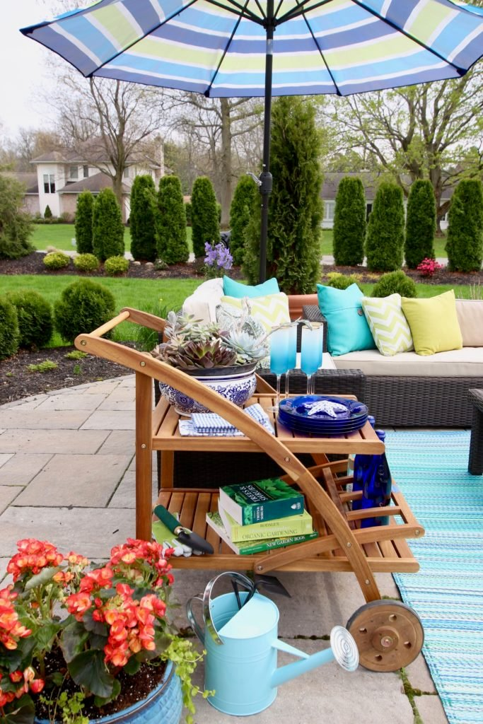 Amie_freling_meme_hill_studio_raymour_flanigan_bar_cart_outdoor_mothers_day_ideas_rochester_ny_succulent_gardens